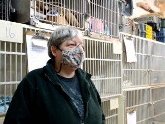 Christine Doucette stands by the cages at the N.L. West SPCA