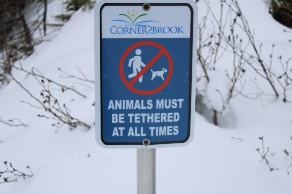 Sign displaying that animals must be tethered at all time.at all times.