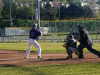 An intermediate ball game between the Vikings and the Shamrocks. back in 2019. Baseball NL hopes play can return to this kind of normal soon.